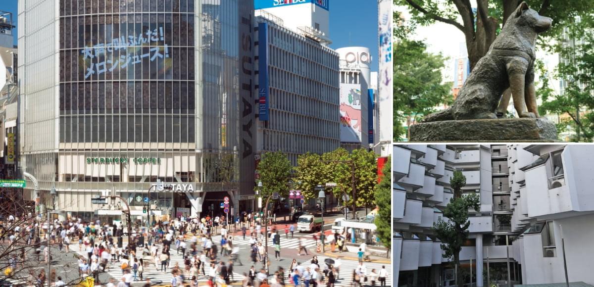 ファーマックス東京校